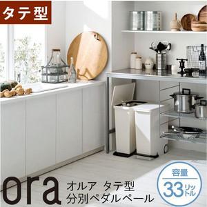 吉川国工業所(ライクイット)・ora(オルア)タテ型分別ペダルペール