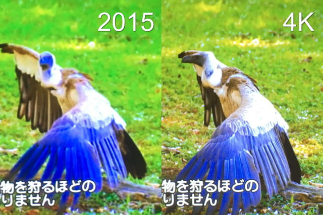 2015年版と4K版の画質の比較