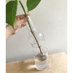 スパイス LABO GLASS ボトルフラワーベース2WAY Lサイズ